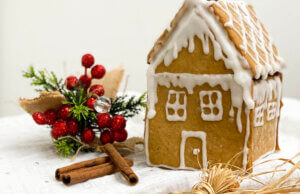 novogodisnja, klub zdravih navika, kzn, novogodisnja klub zdravih navika, novogodisnja kzn, napravite novogodisnju kucicu, novogodisnji slatkis, kucica od medenjaka, trikovi i cake, slatko, desert, Iceberg Salat Centar