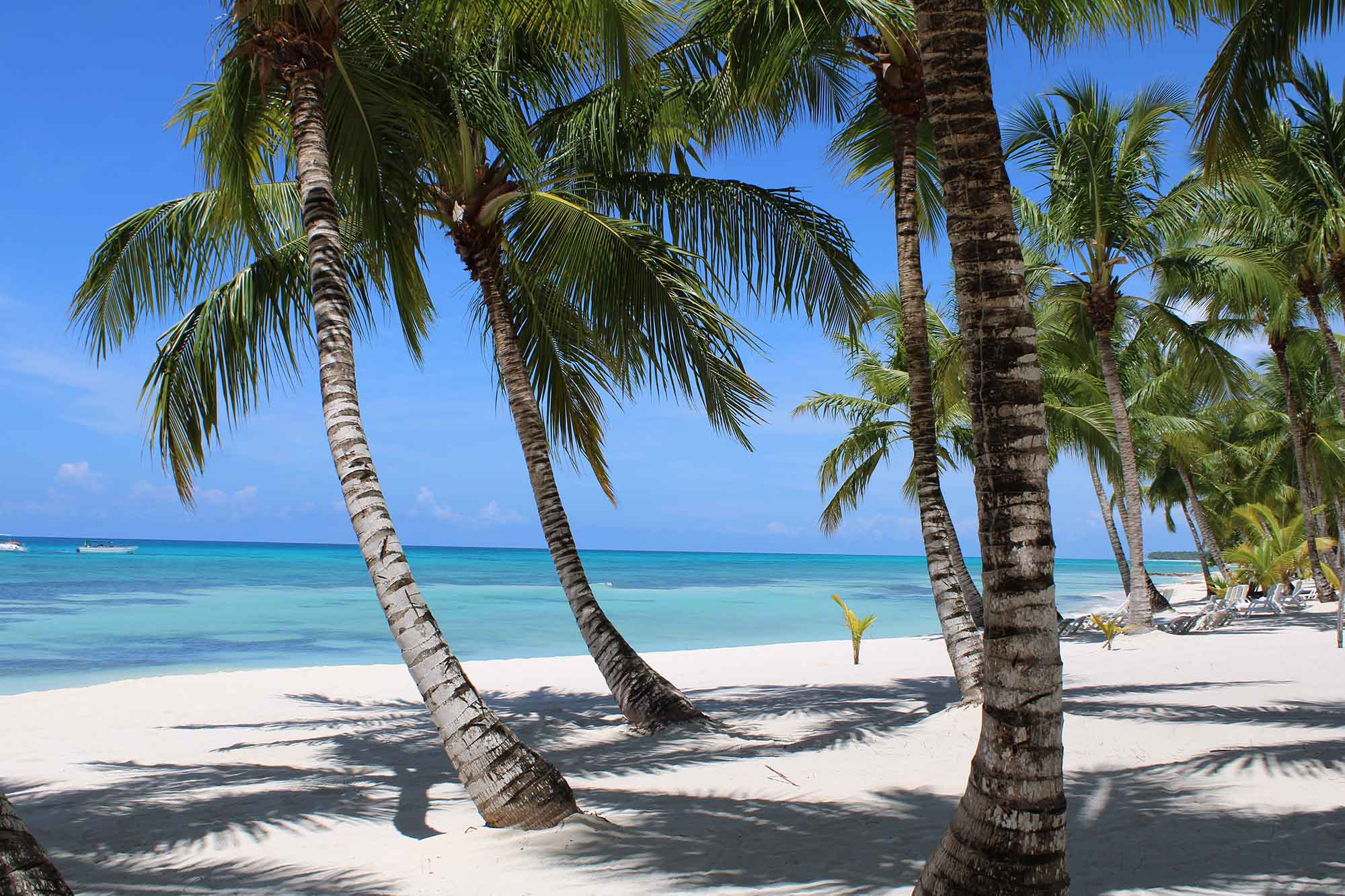 turističke atrakcije, klub zdravih navika, kzn, turističke atrakcije klub zdravih navika, turističke atrakcije kzn, top atrakcije, popularne atrakcije, popularne atrakcije na Dominikani, najlepse plaze na Dominikani, Dominikanska Republika, Dominikana, Karibi, putovanja, travel blog, putovanje u Dominikanu, egzoticno putovanje, lifestyle, zivotni stil, turizam, Iceberg Salat Centar