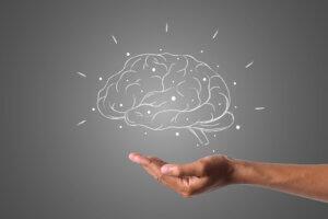magnetna rezonanca glave, klub zdravih navika, kzn, magnetna rezonanca glave klub zdravih navika, magnetna rezonanca glave kzn, snimanje glave, mozdana oboljenja, posledice mozdanog udara, otkrivanje mozdanih oboljenja, dijagnostika mozdanih oboljenja, glavobolje, posledice epilepsije, posledice mozdane infekcije, saveti, zdravlje, zdravstveni saveti, Iceberg Salat Centar